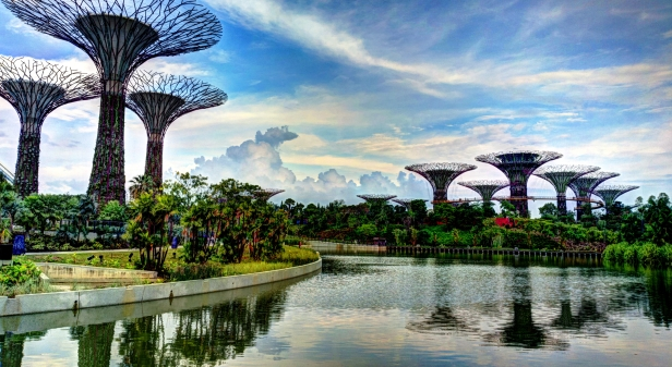Supertree_Grove,_Gardens_by_the_Bay,_Singapore_-_20120704